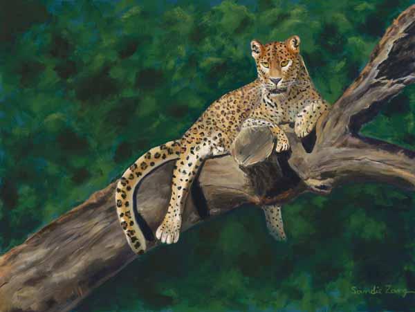 """Leopard In A Tree - 18"""" x 24"""""""